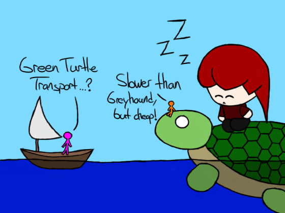 Turtle Travel